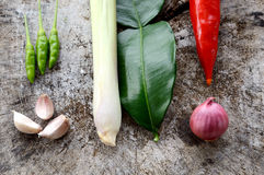 Vegetable hot and spicy ingredient Royalty Free Stock Image