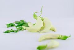 Vegetable Humming Bird Stock Images