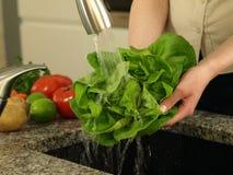 Vegetable hygiene Royalty Free Stock Image