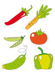 Vegetable icon. Illustration of vegetables icon, isolated on white Stock Images