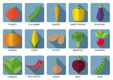 Vegetable icon set. The image of vegetables symbol Stock Photo