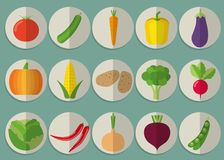 Vegetable icon set. The image of vegetables symbol Stock Images