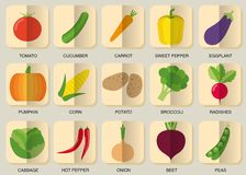 Vegetable icon set. The image of vegetables symbol Royalty Free Stock Photos