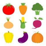 Vegetable icon set. Pepper, tomato, carrot, broccoli, onion, sweet corn, beet, eggplant, aubergine, pumpkin. Fresh farm healthy fo Stock Photos