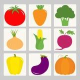 Vegetable icon set. Tomato, pepper, carrot, broccoli, onion, sweet corn, beet, eggplant, aubergine, pumpkin. Fresh farm healthy fo Royalty Free Stock Photography