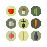 Vegetable. Icon set Royalty Free Stock Photography