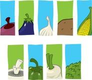 Vegetable icons Stock Photo