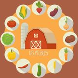 Vegetable icons collection Royalty Free Stock Photography