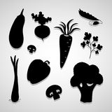 Vegetable icons set great for any use. Vector EPS10. Royalty Free Stock Photo