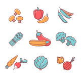 Vegetable icons thin line set Royalty Free Stock Image