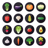 Vegetable icons vector set. Modern flat design. Multicolored. Objects Stock Image