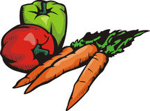 Vegetable illustration series Stock Photography