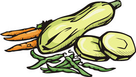 Vegetable illustration series stock illustration