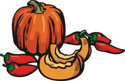 Vegetable illustration series Royalty Free Stock Photos