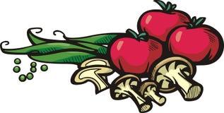 Vegetable illustration series Stock Photo