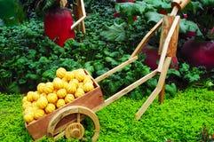 Vegetable In Garden Stock Photography