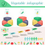 Vegetable infographic. Template for cycling diagram. Healthy lifestyle infographic - vitamines in beet, pea,onion and vegetables. Vegeterian and diet vector Stock Photos