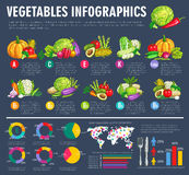 Vegetable infographics with graphs and veggies Stock Images