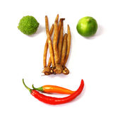 Vegetable and Ingredients. Royalty Free Stock Photo