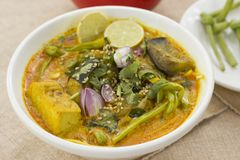 Vegetable Ipoh curry mee. Is a light, hot and spicy curry which is served with noodles Stock Image
