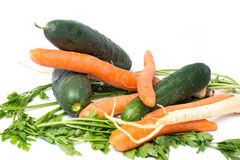 Vegetable isolated on a white background, carrots, cucumbers, parsley root Stock Images