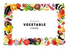 Vegetable isolated on white background, frame made of different flying vegetables, herbs and spices, with copy space. Fresh and healthy food template royalty free stock photography