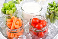 Vegetable Jars in Ice Royalty Free Stock Photos
