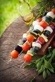 Vegetable kebab стоковое изображение
