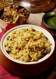 Vegetable Khichdi - A rice dish made from lentils (dal). And vegetables Stock Photography