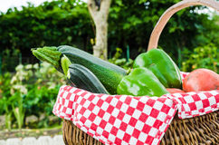Vegetable of kitchen garden in a basket Royalty Free Stock Image