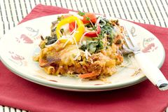 Vegetable lasagna. Tomatos, spinach, cauliflower ,zucchini,mushrooms, carrots and broccoli make up the vegetables included in this lasagna topped with peppers Royalty Free Stock Photos