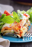 Vegetable lasagna Royalty Free Stock Photos