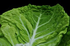 Vegetable, Leaf Vegetable, Leaf, Produce stock photos