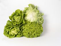 Vegetable, Leaf Vegetable, Produce, Lettuce stock images