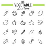 Vegetable line icon set, food symbols collection. Vegetarian vector sketches, logo illustrations, linear pictograms package isolated on white background, eps Royalty Free Stock Image