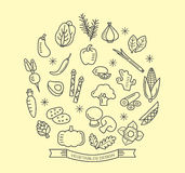 Vegetable line icons with outline style design elements Stock Photos