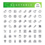 Vegetable Line Icons Set. Set of 56 vegetable line icons suitable for gui, web, infographics and apps. on white background. Clipping paths included.r royalty free illustration