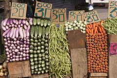 Vegetable Market. Fresh vegetables neatly stacked and priced at the main vegetable market in Colombo, Sri Lanka royalty free stock images