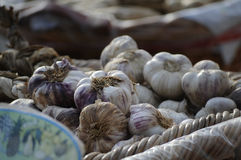 Garlic. Vegetable in market Royalty Free Stock Photo