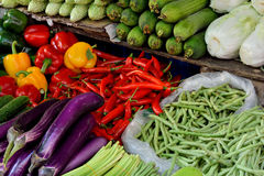 Vegetable in market. Fresh vegetable, eggplant, bitter gourd, cucumber, cabbage and long bean for maketing sales, shown as objective in intersting color and Stock Photos