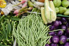 Vegetable market. Fresh vegetable market in thailand stock photography