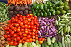 Vegetable market. India. Various vegetables at vegetable market. India royalty free stock photography