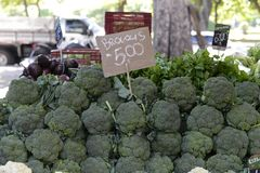 Vegetable market in open-air market. Vegetable market in open-air market with broccoli and price of the product royalty free stock photo