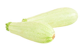 Vegetable marrow  Zucchini Stock Image