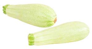 Vegetable marrow royalty free stock photography