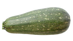 Vegetable Marrow Stock Photos