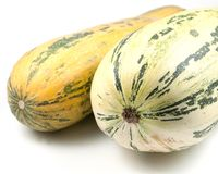 Vegetable marrow. Two vegetable marrows on a light background Stock Photography