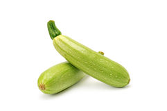 Vegetable marrow Stock Photography