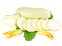 Vegetable marrow Royalty Free Stock Image