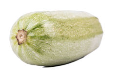 Vegetable marrow closeup Stock Photos
